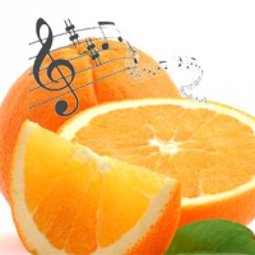 Muziekvitaminen - een dagelijks ritueel in zorginstellingen