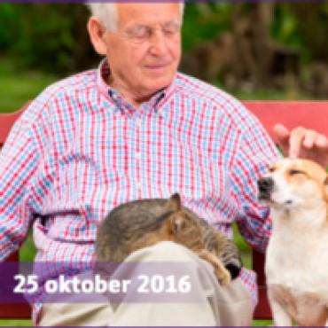 Afscheidssymposium PG lector Frans Hoogeveen