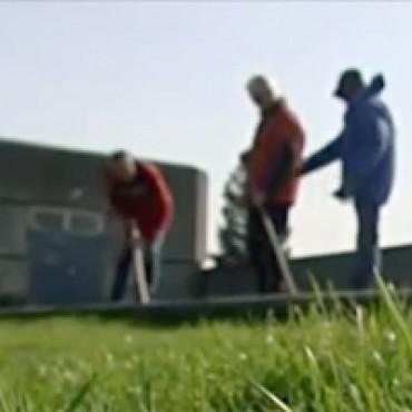 Mensen met dementie zelf aan de slag als vrijwilliger!