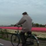 Bij dementie je oude buurtje virtueel fietsend bezoeken