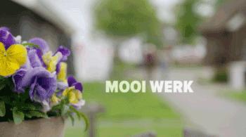 Mooi Werk Middagsymposium Zuidermeer
