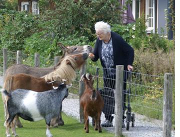 Reigershoeve dierenboerderij